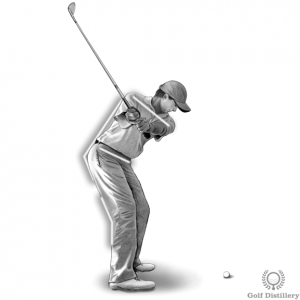 Backswing (behind view)
