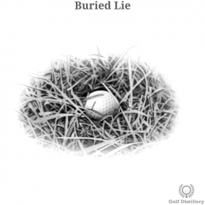 Buried Lie