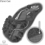 The golf term first cut is located on a golf hole