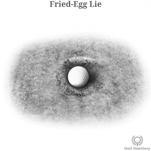 Fried-Egg Lie
