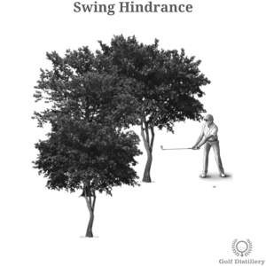 Hindrance to a swing impacting a golfer's lie