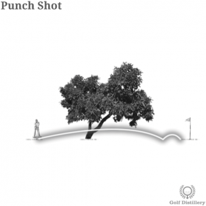 Punch Shot in Golf