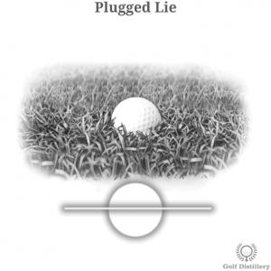 Plugged Lie