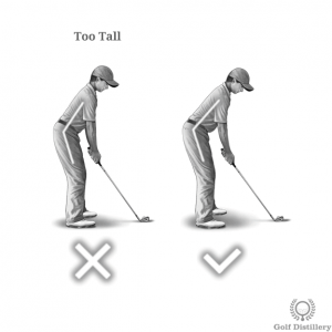 Spine angle should not be set in a too tall position at address