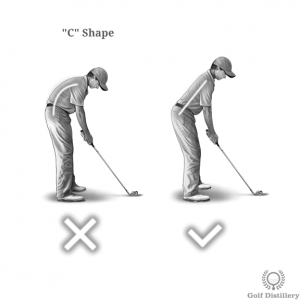 Spine should not adopt a C shape