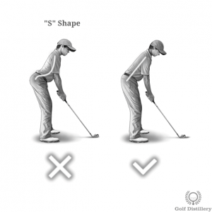 Spine should not adopt an S shape