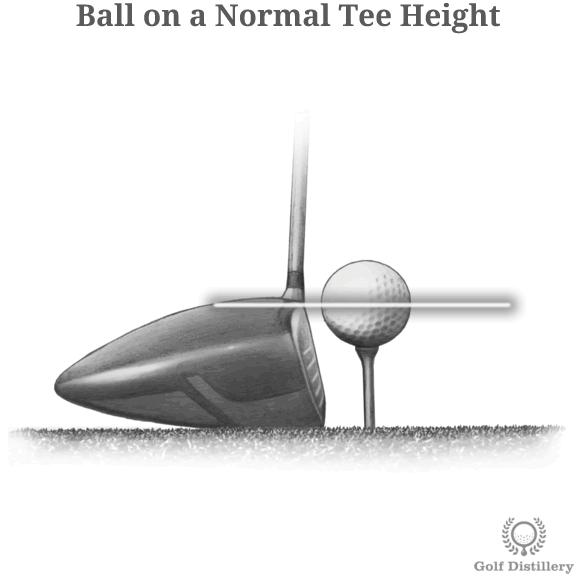 tee-height-normal