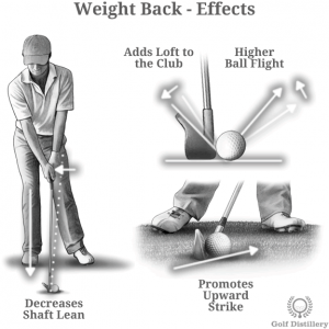 Weight Back Effects
