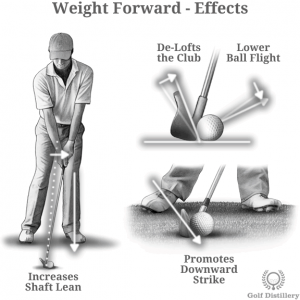 Weight Forward Effects